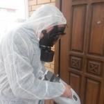 Дезинсекция, уничтожение насекомых в квартире и на дому 🏆 в Москве заказать на дом недорого - Фото 5