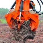 Спиливание деревьев 🏆 в Москве заказать на дом недорого - Фото 2