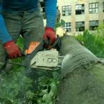 Спиливание деревьев 🏆 в Москве заказать на дом недорого - Фото 5