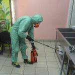 Уничтожение тараканов 🏆 в Москве заказать на дом недорого - Фото 4