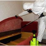 Уничтожение тараканов 🏆 в Москве заказать на дом недорого - Фото 3