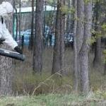Обработка территории от клещей 🏆 в Москве заказать на дом недорого - Фото 7